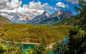 ecosistema de montaña