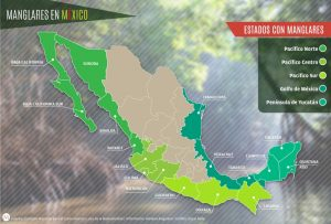 Ecosistemas de México