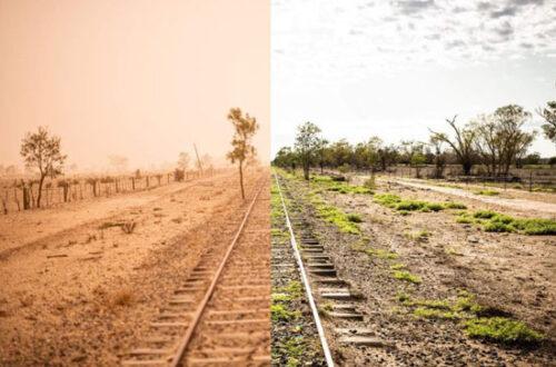 consecuencias de la sequía
