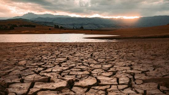 efectos de la sequía en el ecosistema